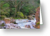 Romania Greeting Cards - Rapids at the Rivers Bend Greeting Card by Jeff Kolker