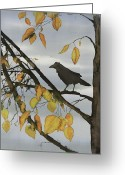 Trees Tapestries - Textiles Greeting Cards - Raven In Birch Greeting Card by Carolyn Doe