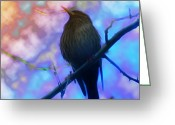 Black Bird Greeting Cards - Raven in Spring Greeting Card by Bill Cannon