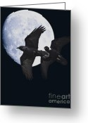 Full Moons Greeting Cards - Ravens of the Night Greeting Card by Wingsdomain Art and Photography
