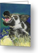 Boar Greeting Cards - Razorback Greeting Card by Tracy L Teeter