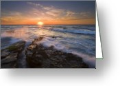 Sea Greeting Cards - Reaching for the Sun Greeting Card by Mike  Dawson