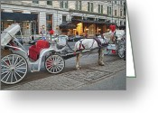 Horse And Buggy Greeting Cards - Ready For A Ride Greeting Card by Kathy Jennings