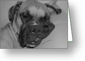 Drool Greeting Cards - Really Comfy Greeting Card by DigiArt Diaries by Vicky Browning