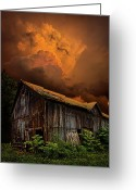 Natural Light Greeting Cards - Recluse Greeting Card by Phil Koch