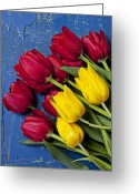Texture Flower Greeting Cards - Red and yellow tulips Greeting Card by Garry Gay