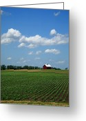 Americana Greeting Cards - Red Barn and Cornfield Greeting Card by Frank Romeo