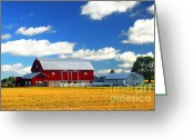 Grain Greeting Cards - Red barn Greeting Card by Elena Elisseeva