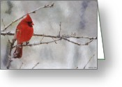 Snow Digital Art Greeting Cards - Red Bird of Winter Greeting Card by Jeff Kolker