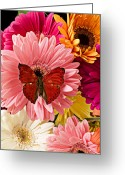 Flora Photo Greeting Cards - Red butterfly on bunch of flowers Greeting Card by Garry Gay