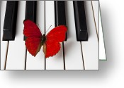 Piano Greeting Cards - Red Butterfly On Piano Keys Greeting Card by Garry Gay