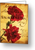 Pink Carnations Greeting Cards - Red Carnation Poster Greeting Card by Cathie Tyler
