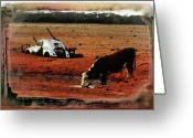 Waterhole Greeting Cards - Red Day Greeting Card by Douglas Barnard