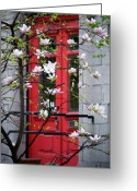 Custom Art Photo Greeting Cards - Red Door Greeting Card by Lisa Knechtel