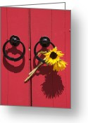 Red Door Greeting Cards - Red door sunflowers Greeting Card by Garry Gay