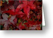 Fall Photographs Greeting Cards - Red Fall Leaves - Oil Painting Look - Photography - Digital Art Greeting Card by Rebecca Anne Grant