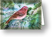 Francis Digital Art Greeting Cards - Red Finch Greeting Card by Mindy Newman