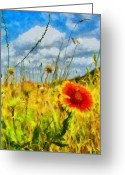 Jeff Kolker Greeting Cards - Red Flower in the Field Greeting Card by Jeff Kolker