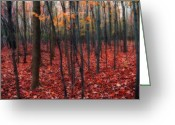 Autumn Colors Greeting Cards - Red Forest Greeting Card by Gothicolors With Crows