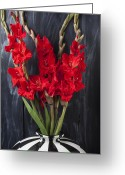 Reds Greeting Cards - Red gladiolus in striped vase Greeting Card by Garry Gay