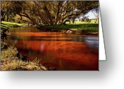 Gully Greeting Cards - Red Gully Greeting Card by Heather Thorning