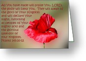 Flower Blossom Greeting Cards - Red Hot Poppy Greeting Card by Linda Phelps