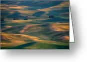 Wheatfields Photo Greeting Cards - Red in a Sea of Green Greeting Card by Mike  Dawson