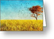 Red Birds Greeting Cards - Red Maple Greeting Card by Bob Orsillo