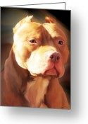 Pitbull Greeting Cards - Red Pit Bull by Spano Greeting Card by Michael Spano