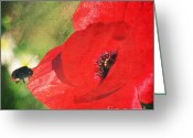 Texture Floral Mixed Media Greeting Cards - Red poppy impression Greeting Card by Angela Doelling AD DESIGN Photo and PhotoArt