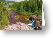 Swiftcurrent Falls Greeting Cards - Red Rock Area along Swiftcurrent Trail in Glacier NP Greeting Card by Ruth Hager