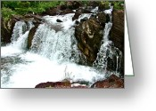 Swiftcurrent Falls Greeting Cards - Red Rock Falls along Swiftcurrent Pass Trail in Glacier NP Greeting Card by Ruth Hager