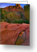 Puddle Photo Greeting Cards - Red Rock Reflection Greeting Card by Mike  Dawson