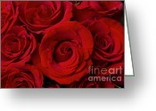 Bouquet Of Roses Greeting Cards - Red Rose Bouquet   Greeting Card by James Bo Insogna