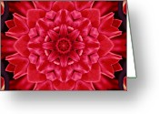 Purple Greeting Cards - Red Rose Kaleidoscope Greeting Card by Cathie Tyler