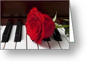 Pianos Greeting Cards - Red rose on piano Greeting Card by Garry Gay