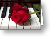 Pianos Greeting Cards - Red rose on piano keys Greeting Card by Garry Gay