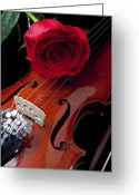 Stems Greeting Cards - Red Rose With Violin Greeting Card by Garry Gay