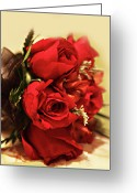 Roses Petals Greeting Cards - Red Roses for You Greeting Card by Linda Phelps