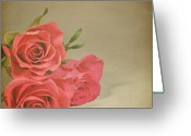 Rose Petals Greeting Cards - Red Roses Greeting Card by Photo - Lyn Randle