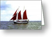 Happy Texas Artist Greeting Cards - Red Sails Greeting Card by Fred Jinkins