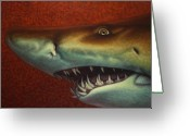 Fish Painting Greeting Cards - Red Sea Shark Greeting Card by James W Johnson