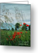Wayside Greeting Cards - Red Spots in the Wind Greeting Card by Jutta Maria Pusl