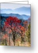 Smoky Mountains Greeting Cards - Red Spring Greeting Card by Irene Abdou