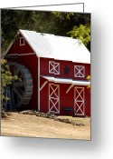 Star Barn Greeting Cards - Red Star Barn Greeting Card by Holly Blunkall