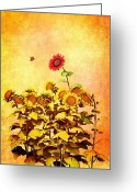 Summer Digital Art Greeting Cards - Red Sunflower Greeting Card by Bob Orsillo