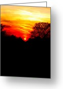 Evening Light Greeting Cards - Red sunset vertical Greeting Card by Jasna Buncic