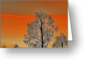 Nature Greeting Cards - Red Sunset With Trees Greeting Card by Ben and Raisa Gertsberg