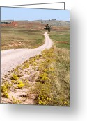 Dusty Road Greeting Cards - Red Valley Road Greeting Card by Larry Ricker