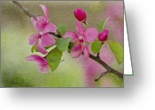 Bud Digital Art Greeting Cards - Redbud Branch Greeting Card by Jeff Kolker